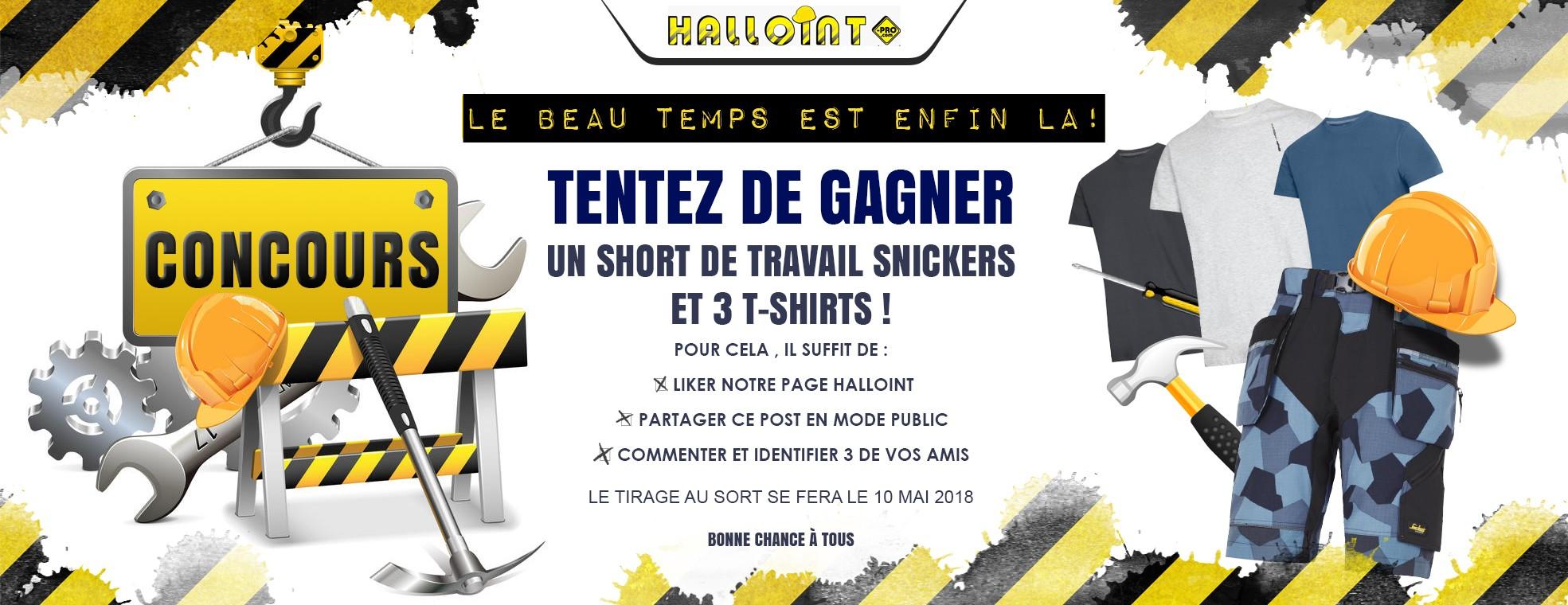 Halloint_banner_Concours[329153]